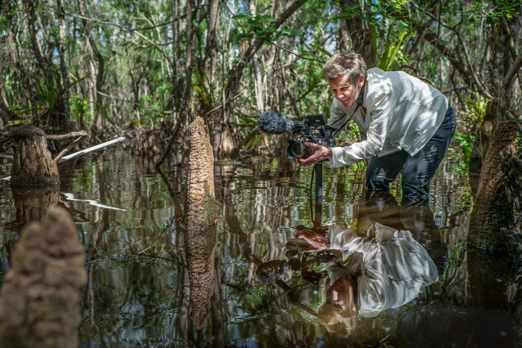SwampScapes, réalisé par Elizabeth Miller, Kim Grinfeder, Juan Carlos Zaldivar.